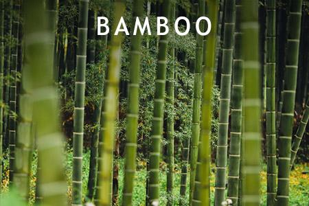 BAMBOO_
